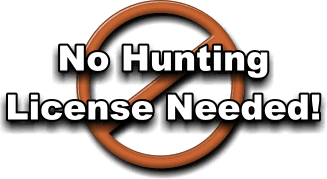 No Guide Fees here at Honey Hole Hunt Club & Outfitters!